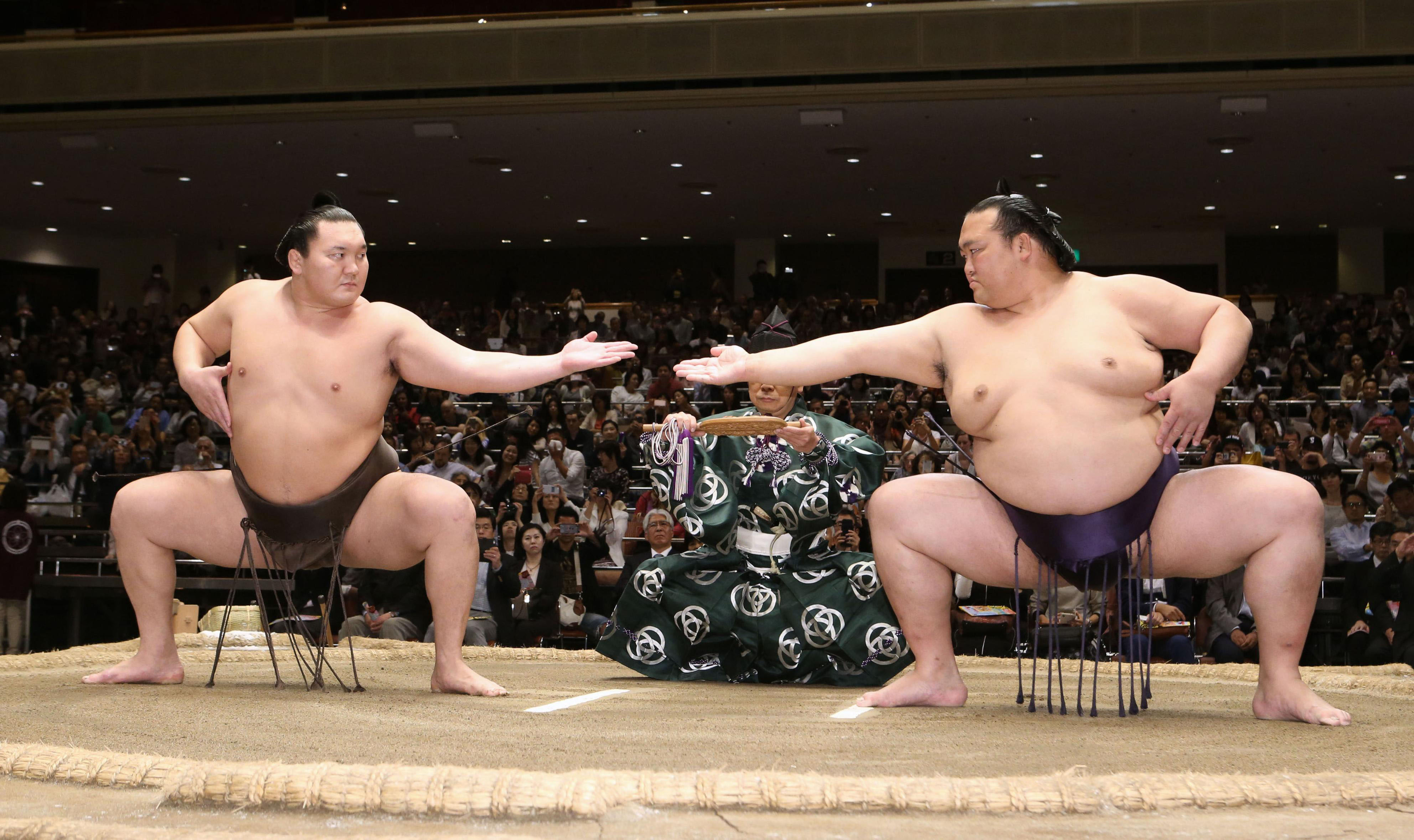 Sumo Wrestling Tokyo Early Morning Training Sumo Stable Tour Question Japan