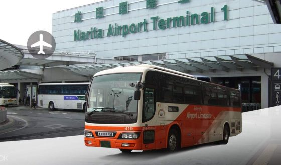 Airport Limousine Bus Transfer from/to Narita & Haneda International Airport