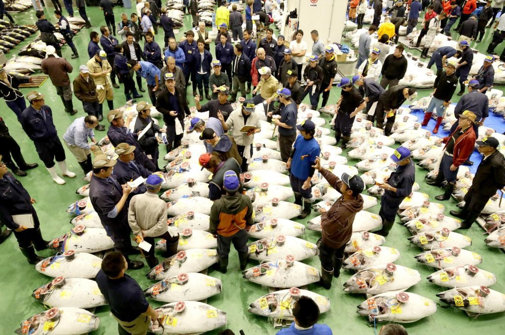 Private Tuna Auction and Tokyo Toyosu Fish Market Tour