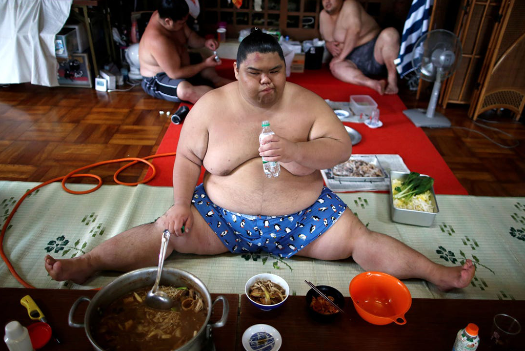 why are sumo wrestlers fat